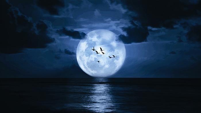 [Bộ sưu tập 2021] Tổng hợp những hình ảnh Mặt Trăng đẹp nhất 11