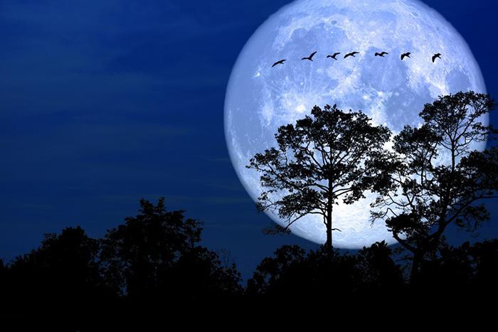 [Bộ sưu tập 2021] Tổng hợp những hình ảnh Mặt Trăng đẹp nhất 3