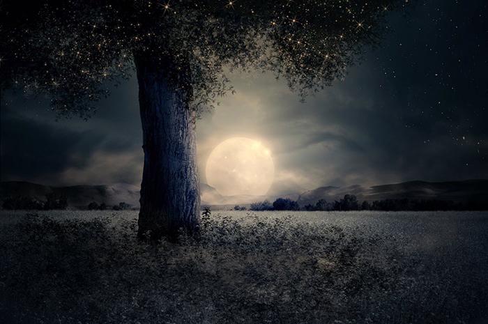 [Bộ sưu tập 2021] Tổng hợp những hình ảnh Mặt Trăng đẹp nhất 8